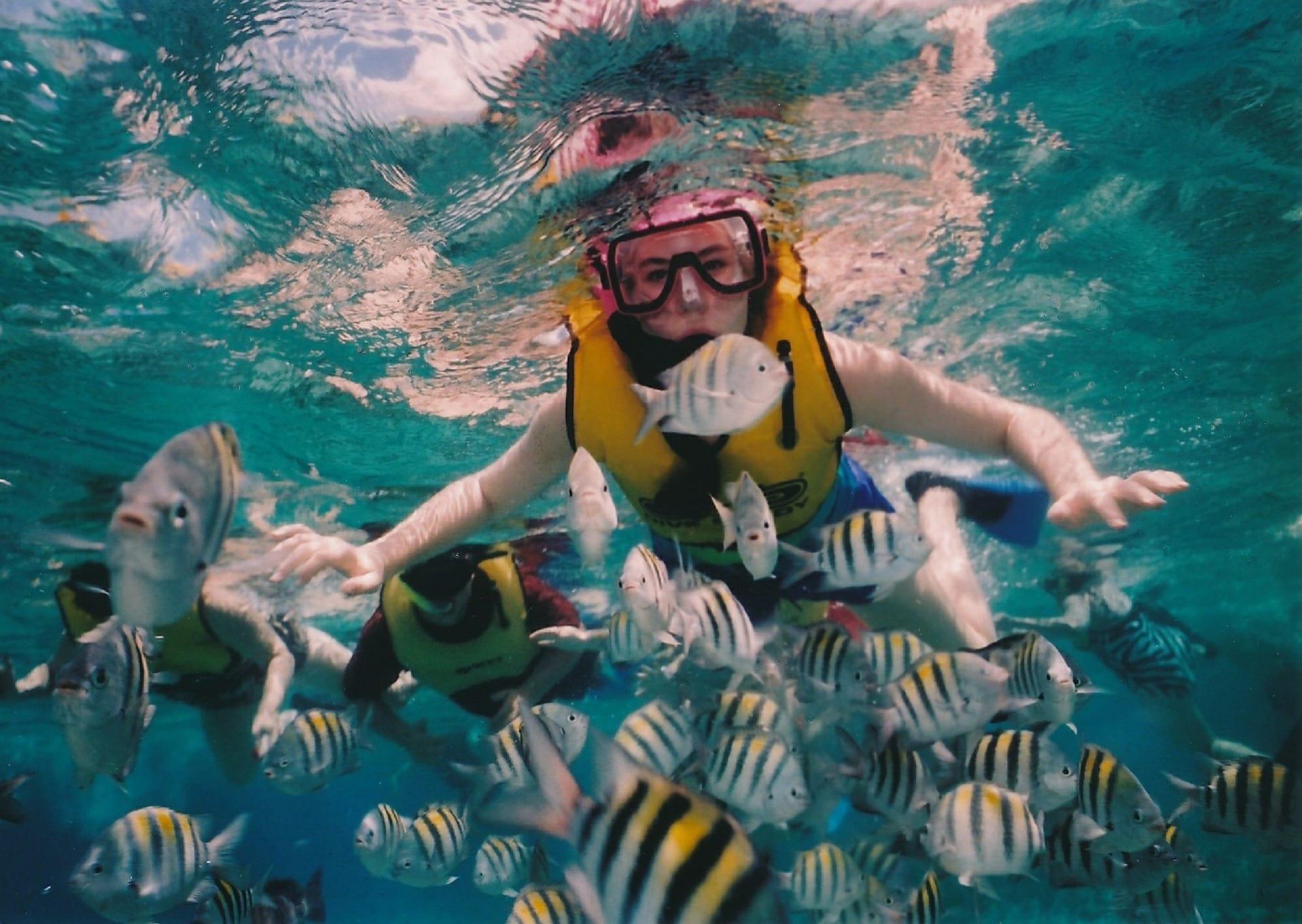 reef-snorkeling