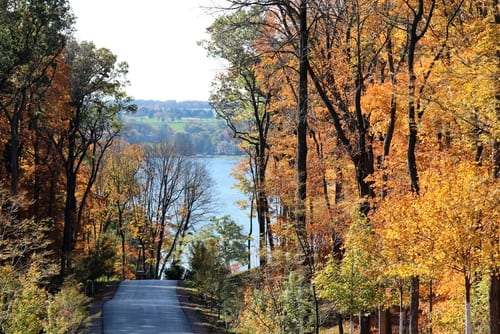 fall foliage lake geneva