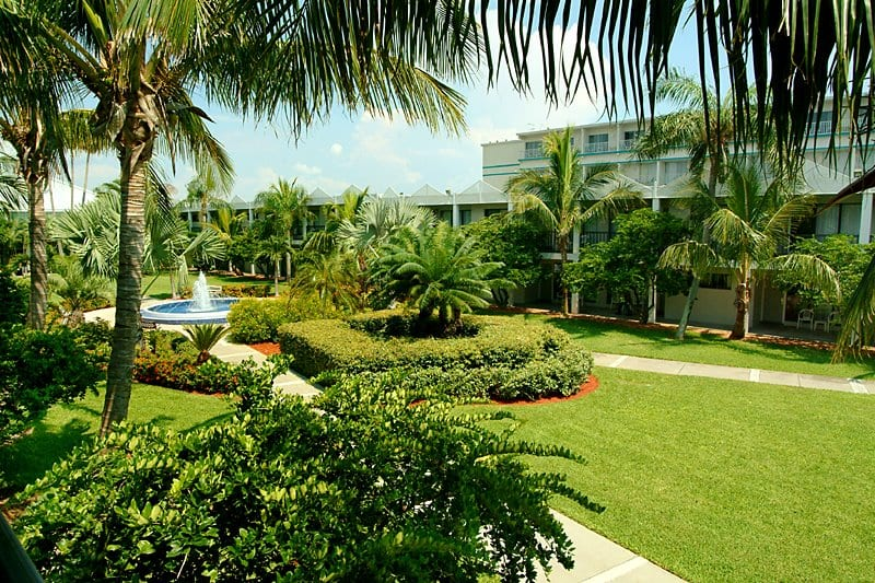 Florida - Beachcomber