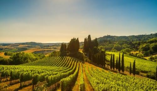 Italy - Tuscany edit